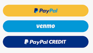 PayPal's Doing Business Fees